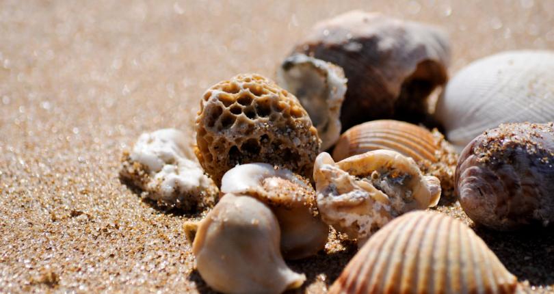 Le 10 spiagge più belle in provincia di Ragusa